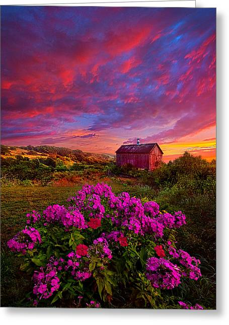 Live In The Moment Greeting Card by Phil Koch