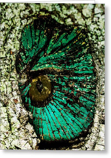 Outdoors Tapestries - Textiles Greeting Cards - Live Oak Greeting Card by James Hennis