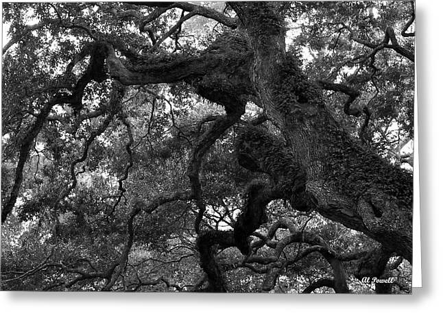 Al Powell Photography Usa Greeting Cards - Live Oak Limbs Greeting Card by Al Powell Photography USA