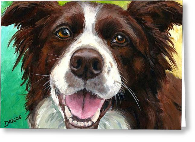 Liver and White Border Collie Greeting Card by Dottie Dracos