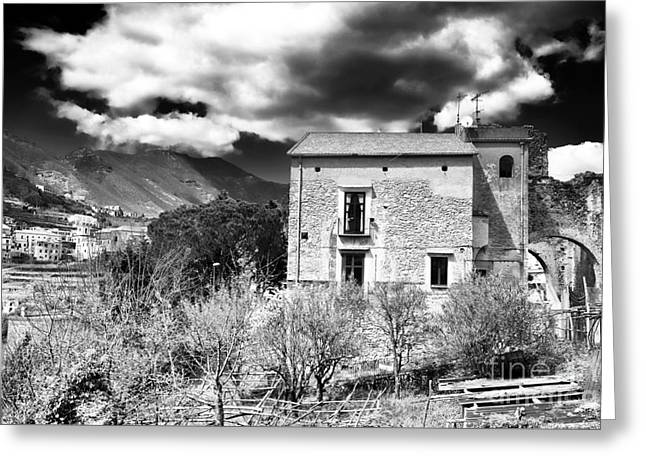 Oldest Living Tree Greeting Cards - Living in Ravello Greeting Card by John Rizzuto