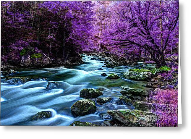 River Scenes Greeting Cards - Living In Yesterdays Dream Greeting Card by Michael Eingle