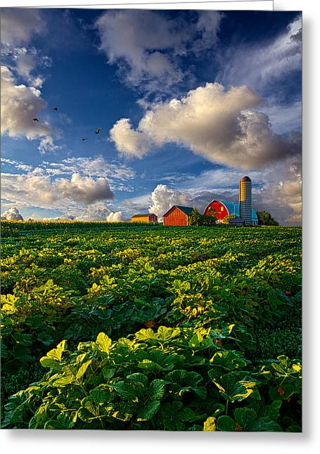 Farm Photography Greeting Cards - Living Wisconsin Greeting Card by Phil Koch