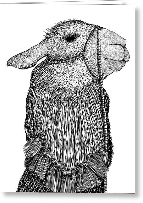 Llama Drawings Greeting Cards - Llama Greeting Card by Karl Addison
