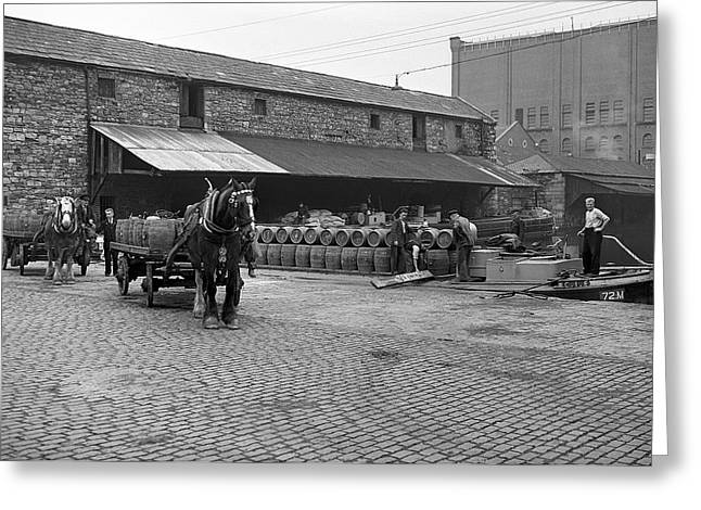 The Horse Greeting Cards - Loading Barrells of Guinness  Greeting Card by Irish Photo Archive