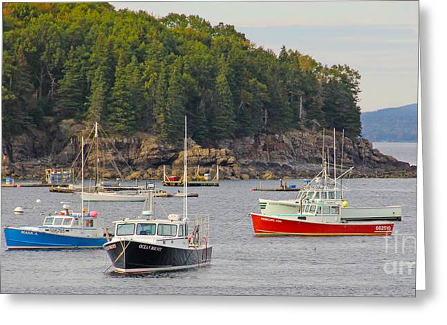 Bar Harbor Greeting Cards - Lobster Boats in Bar Harbor Greeting Card by Jack Schultz