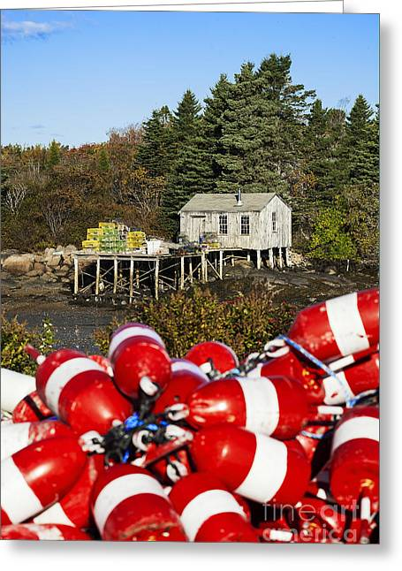 New England Village Greeting Cards - Lobster Buoys Corea Greeting Card by John Greim