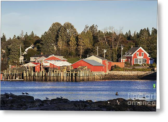 New England Village Greeting Cards - Lobster Market Greeting Card by John Greim