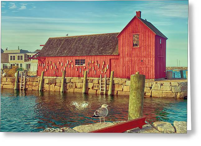 Lobster Shack Greeting Card by Mick Burkey