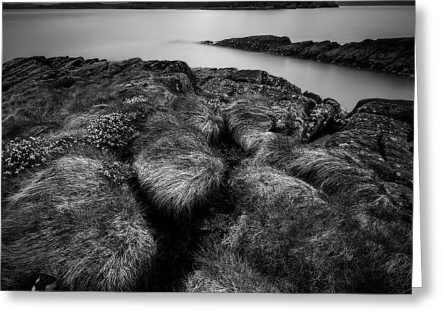 Ocean Landscape Greeting Cards - Loch Ewe Greeting Card by Dave Bowman