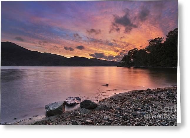 Trossachs National Park Greeting Cards - Loch Katrine 1 Greeting Card by Rod McLean