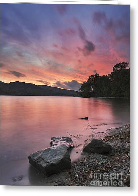 Trossachs National Park Greeting Cards - Loch Katrine 2 Greeting Card by Rod McLean