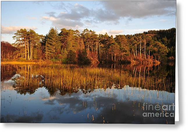 Loch Lundie Greeting Card by Stephen Smith