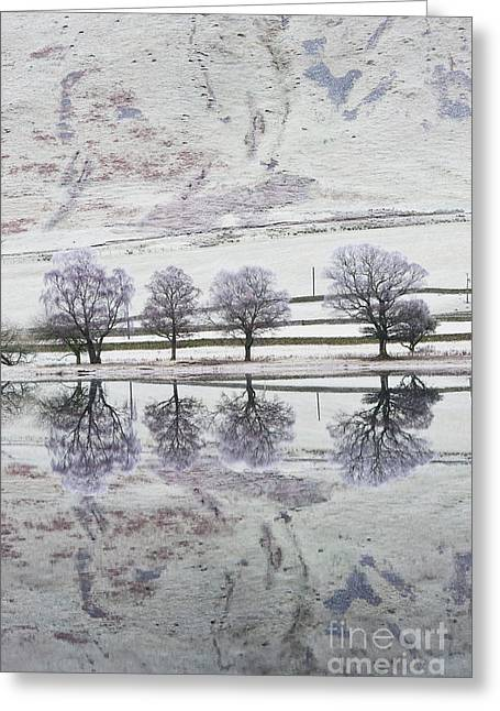 Loch Of The Lowes Greeting Card by Tim Gainey