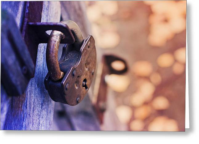 Safekeeping Greeting Cards - Lock on Fence for Security Greeting Card by Oksana Ariskina