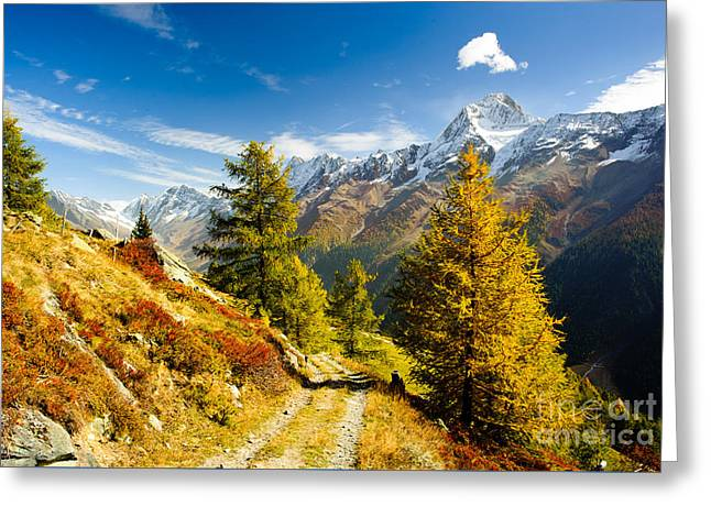 Swiss Photographs Greeting Cards - Loetschental in autumn Greeting Card by Peter Wey