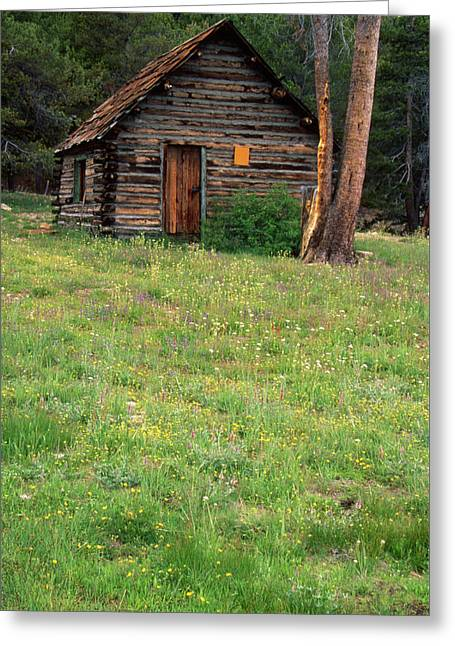 Log Cabin - Casa Vieja Meadow Greeting Card by Soli Deo Gloria Wilderness And Wildlife Photography