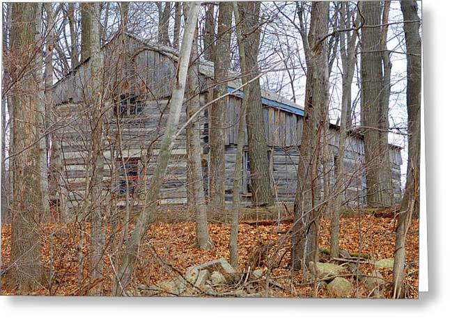 Lawn Chair Greeting Cards - log cabin revisited spring 2015 One Greeting Card by Tina M Wenger