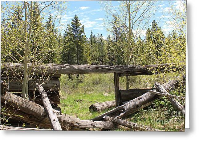 Logging Camp Ruins Greeting Card by Tonya Hance