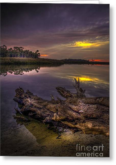 Gulf Of Mexico Scenes Greeting Cards - Logging Out Greeting Card by Marvin Spates