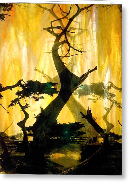 The Trees Glass Art Greeting Cards - Lone Cypress Greeting Card by Mykel Davis