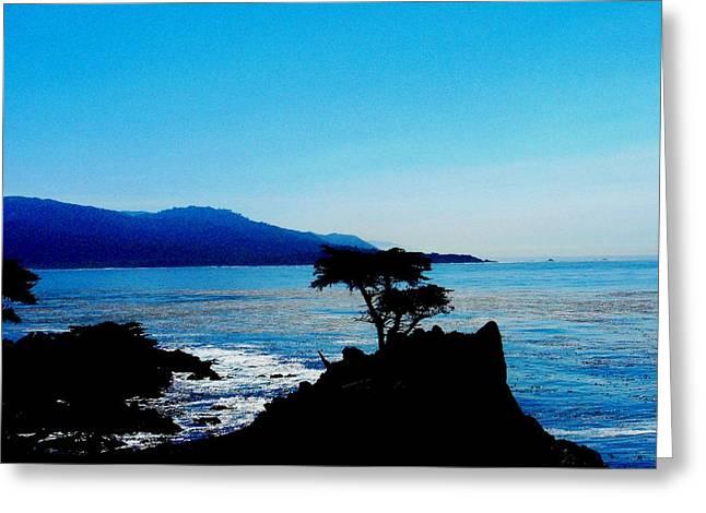 Pacific Pyrography Greeting Cards - Lone Cypress Tree - Pebble Beach CA Greeting Card by Fareeha Khawaja