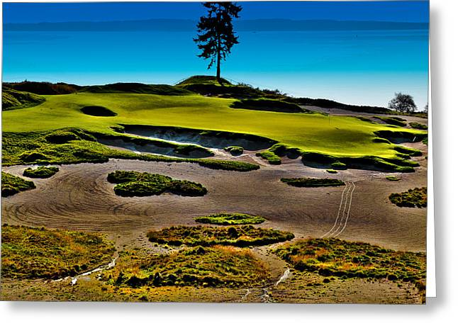 Us Open Greeting Cards - Lone Fir - Hole #15 at Chambers Bay Greeting Card by David Patterson