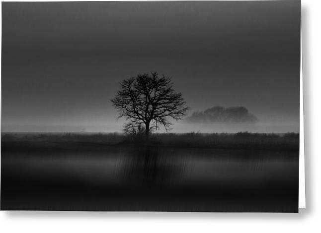 Decor Pyrography Greeting Cards - Lone Tree 1 Greeting Card by John Palmer