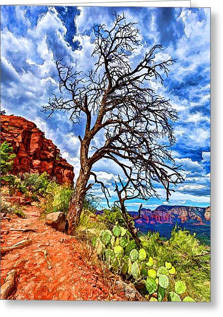 Lone Tree At Airport Mesa Greeting Card by ABeautifulSky Photography