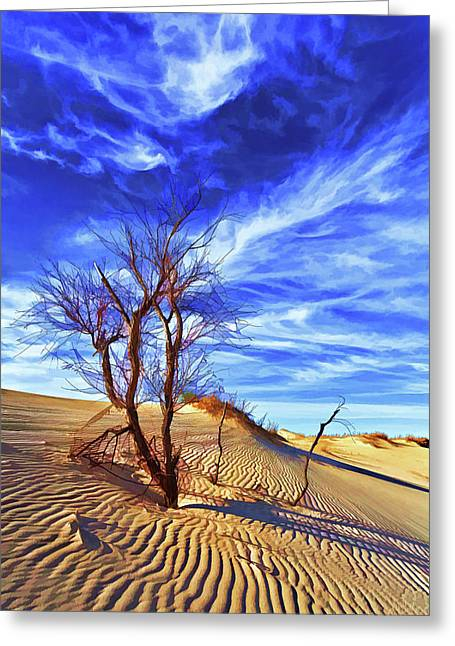 Tan Lines Greeting Cards - Lone Tree at Sandhills SP Greeting Card by Bill Caldwell -        ABeautifulSky Photography