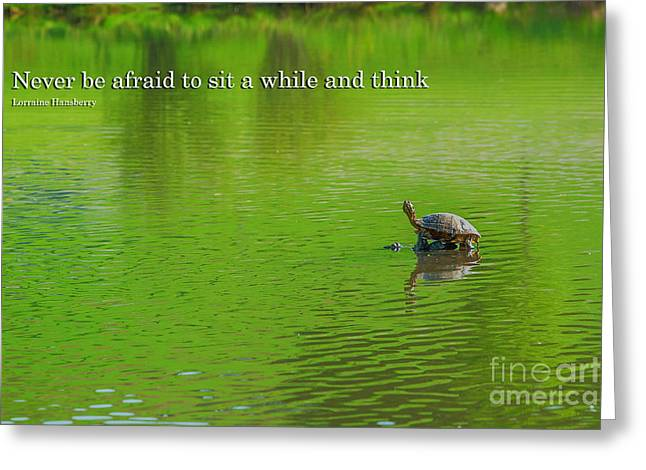Motivational Poster Greeting Cards - Lone Turtle in Lake Motivational Greeting Card by Randy Steele