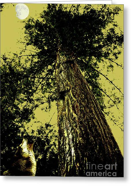 Mossy Trees Greeting Cards - Lone Wolf Howling at The Moon . 7D5390 Greeting Card by Wingsdomain Art and Photography