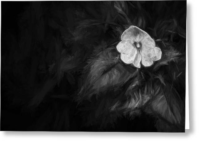 lonely 1 III Greeting Card by Jon Glaser