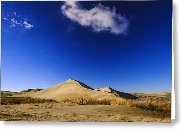 Lonely Cloud Over Sand Dunes At Bruneau Dunes State Park Idaho Usa Greeting Card by Vishwanath Bhat
