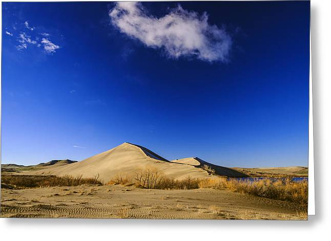 Sand Patterns Greeting Cards - Lonely cloud over sand dunes at Bruneau Dunes State Park Idaho USA Greeting Card by Vishwanath Bhat