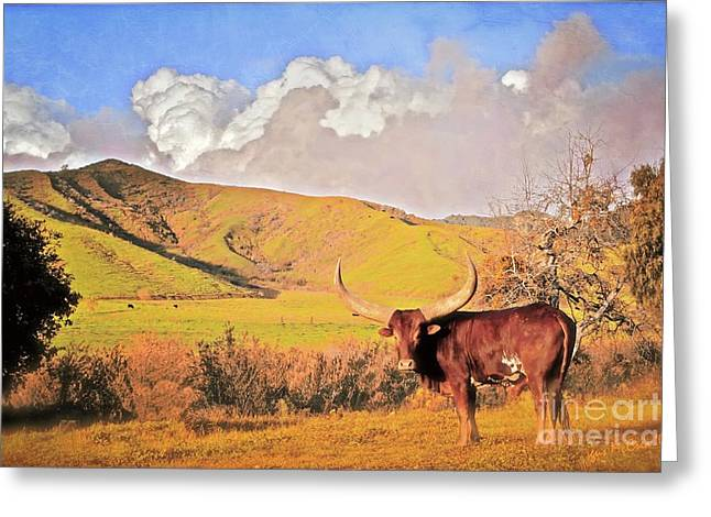Ranch Digital Art Greeting Cards - Lonesome Longhorn Greeting Card by Gus McCrea
