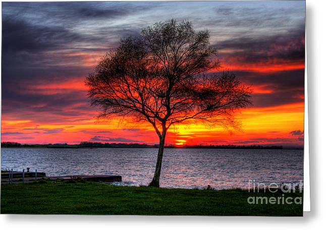 Amazing Sunset Mixed Media Greeting Cards - Lonesome Sunset  Greeting Card by Kim Shatwell-Irishphotographer