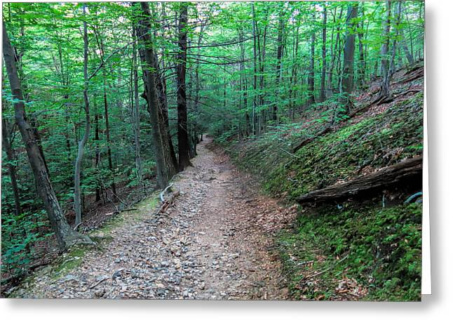 Moss Greeting Cards - Long and Winding Trail Greeting Card by Jean Macaluso