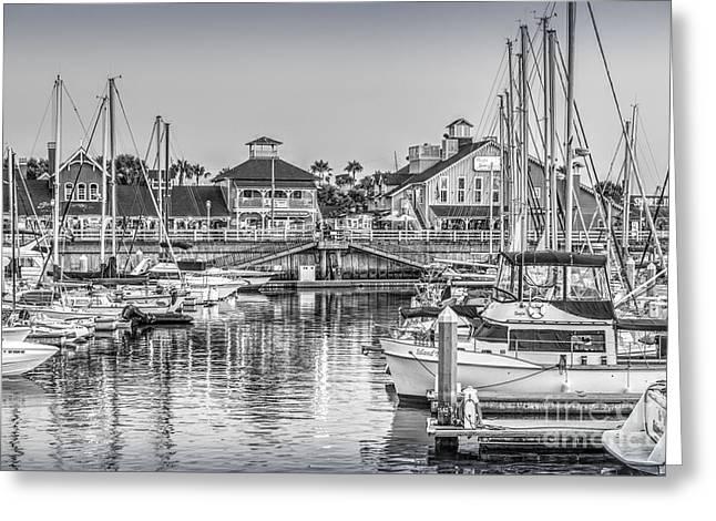 Long Street Greeting Cards - Long Beach Rainbow Marina Boats Greeting Card by David  Zanzinger