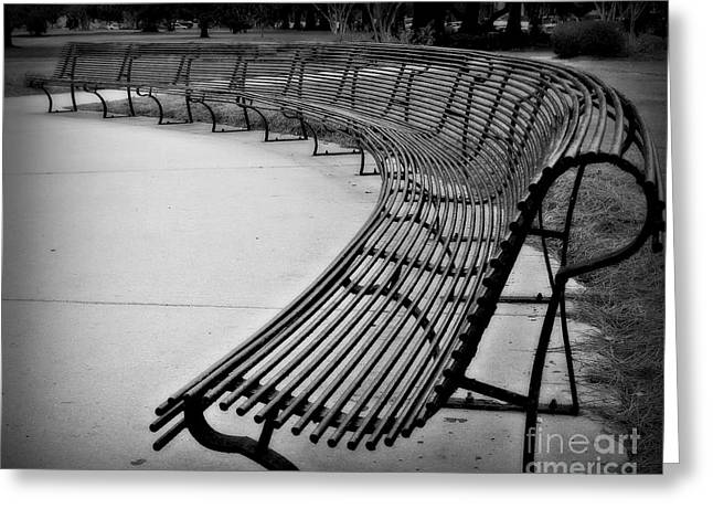 White City Park Greeting Cards - Long Bench Greeting Card by Perry Webster