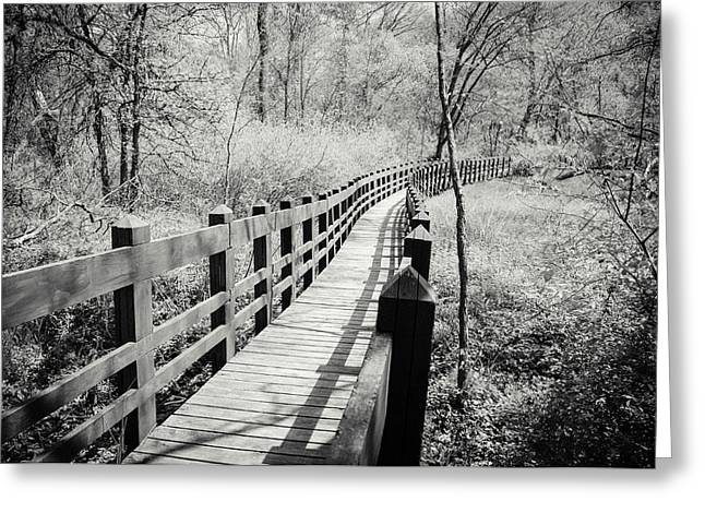 Amy Turner Greeting Cards - Long Bridge Greeting Card by Amy Turner