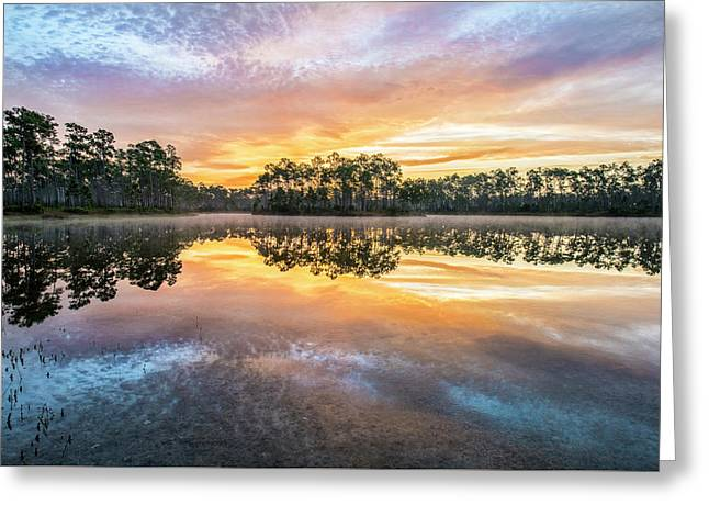 Long Pine Colors Greeting Card by Jon Glaser