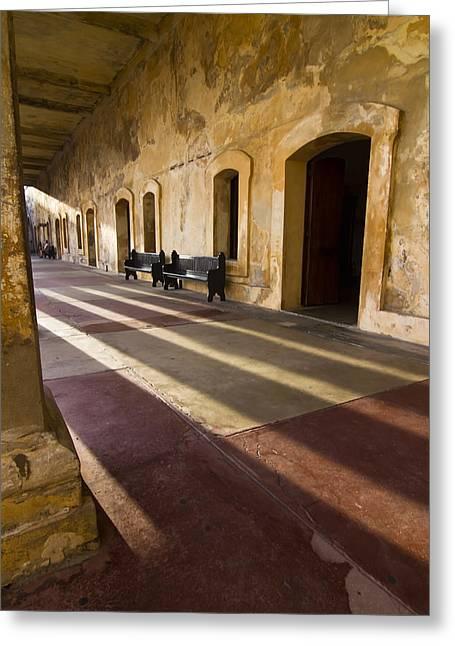 Long Shadows In San Cristobal Greeting Card by Sven Brogren