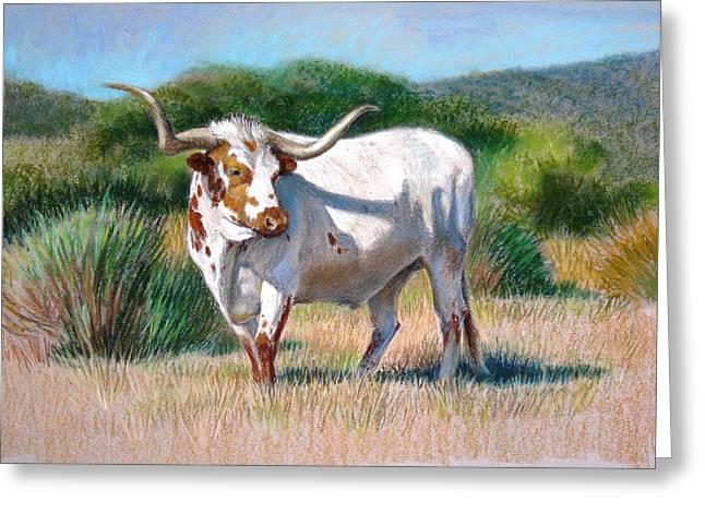 Bulls Pastels Greeting Cards - Longhorn Bull Greeting Card by Sue Halstenberg