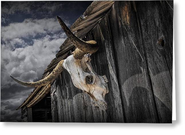 Western Photographs Greeting Cards - Longhorn Steer Skull on the Barn Greeting Card by Randall Nyhof