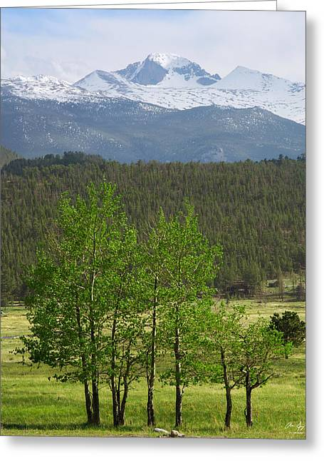 Mountains With Snow Greeting Cards - Longs Peak from Moraine Park - Spring Greeting Card by Aaron Spong