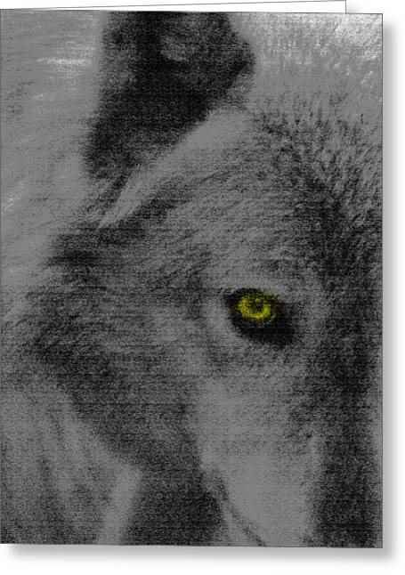 Did You See That Greeting Cards - Look Into My Eye Greeting Card by Debra     Vatalaro