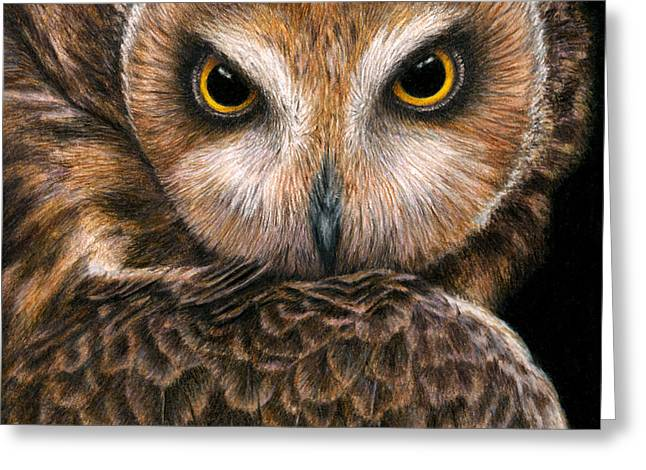 Color Pencil Greeting Cards - Look into my Eyes Greeting Card by Pat Erickson