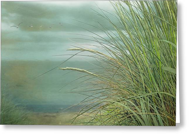 Sand Art Greeting Cards - Look to the Sea Greeting Card by Hal Halli
