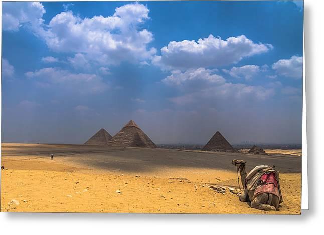 Pyramids Greeting Cards - Look Towards The Ancient Wonder Greeting Card by Julis Simo